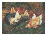 Amis à plumes Reproduction d'art par Vickie Wade