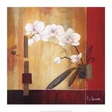 Orchid Lines II Reproduction d'art par Don Li-Leger