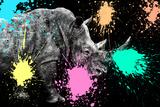Safari Colors Pop Collection - Rhino Portrait VIII