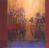 Lever de soleil aux iris Reproduction d'art par Don Li-Leger