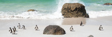 Awesome South Africa Collection Panoramic - Penguins on the Beach II