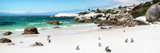 Awesome South Africa Collection Panoramic - Penguins at Boulders Beach II