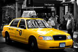 Safari CityPop Collection - NYC Union Square II