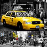 Safari CityPop Collection in New York