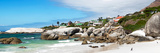 Awesome South Africa Collection Panoramic - Boulders Beach Penguins Colony