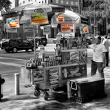 Safari CityPop Collection - NYC Hot Dog with Zebra Man II
