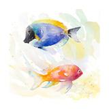 Tropical Fish Square I