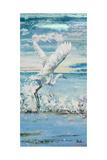 Great Blue Egret I