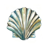 Aquarelle Shells VI Reproduction d'art par Chariklia Zarris
