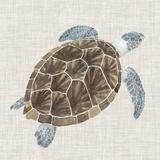 Sea Turtle I Reproduction d'art par Naomi McCavitt