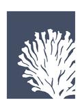 Corals White on Indigo Blue d