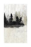 Pine Island II Reproduction d'art par Naomi McCavitt