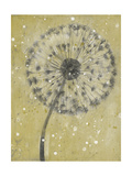 Dandelion Abstract I