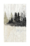 Pine Island I Reproduction d'art par Naomi McCavitt