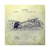 Animal Trap  1882