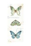 My Greenhouse Butterflies VI