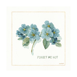 My Greenhouse Forget Me Not