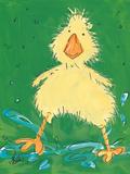Duckling Ii