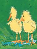 Duckling Iii