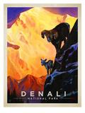 KC NP Denali