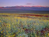 California  Death Valley National Park