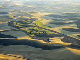 Aerial at Harvest Time in the Palouse Region of Eastern Washington