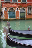 Gondolas Along the Grand Canal  Venice  Italy