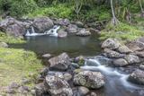 Hawaii  Kauai  Limahuli Garden and Preserve