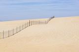 USA  California  Oso Flaco State Park  Part of Oceano Dunes Svra