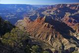 USA  Arizona  Grand Canyon Vista