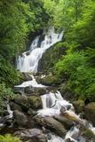 Torc Waterfalls  Killarney National Park  County Kerry  Republic of Ireland