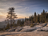 USA  California  Sequoia National Park Sunset Near Beetle Rock Education Center