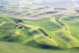 Washington  Whitman County Aerial Photography in the Palouse Region of Eastern Washington
