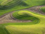 Washington  Whitman County Aerial Photography in the Palouse Region of Eastern Washington