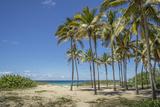 Playa De L'Este  Havana  Cuba  West Indies  Caribbean  Central America