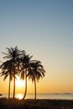Sunset at Long Beach  Phu Quoc Island  Vietnam  Indochina  Southeast Asia  Asia