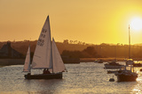 A Sunset View of Sailing on the River Exe at Topsham  Near Exeter  Devon  England  United Kingdom