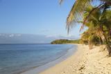 Beach on Mana Island  Mamanuca Islands  Fiji  South Pacific  Pacific
