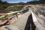 The Devil's Bath Walkway  Waiotapu Goethermal Wonderland  Rotorua  New Zealand  Oceania