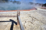 Champagne Pool  Hot Springs  Waiotapu Goethermal Wonderland  Rotorua  New Zealand  Oceania