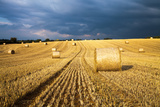 Baled Field  Gloucestershire  England  United Kingdom  Europe