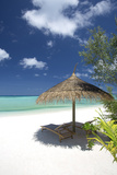 Lounge Chairs under Shade of Umbrella on Tropical Beach  Maldives  Indian Ocean  Asia