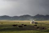 Lake Song-Kol  Kyrgyzstan  Central Asia