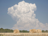 Billowing Cloud over a Wheat Field  France  Europe