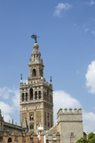 La Giralda  Bell Tower  Seville Cathedral  Seville  Andalucia  Spain