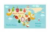 Fruit World Map North America