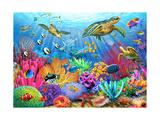 Turtle Coral Reef