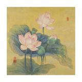 Dream Lotus