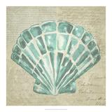 Seafoam Shell III Reproduction d'art par Chariklia Zarris