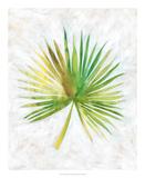 Ocean Side Palms II